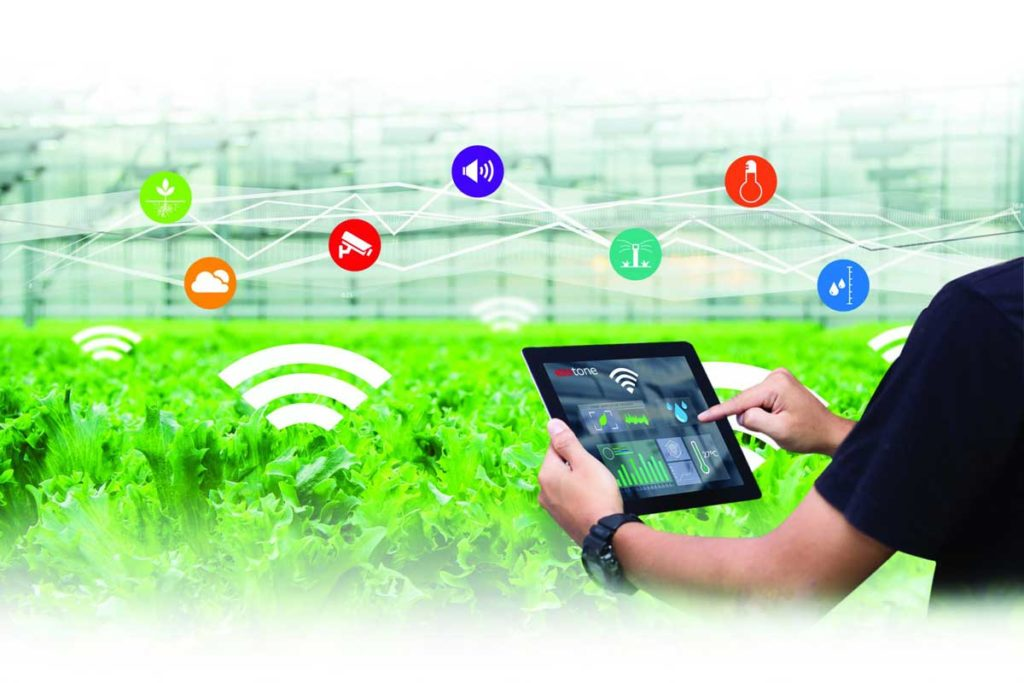 IOT-BASED FARMING  AGRICULTURE MEETS TECHNOLOGY - REDtone